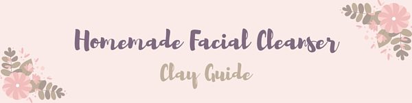Homemade Facial Cleanser Clay Guide