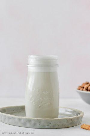 Tigernut Milk Spanish Horchata (dairy free, vegan, paleo)